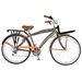Hollandia Land Cruiser M1 26 Cruiser Bicycle - NAHOLL-3