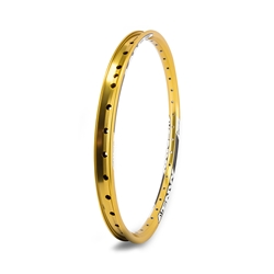 SUN RINGLE Envy FT